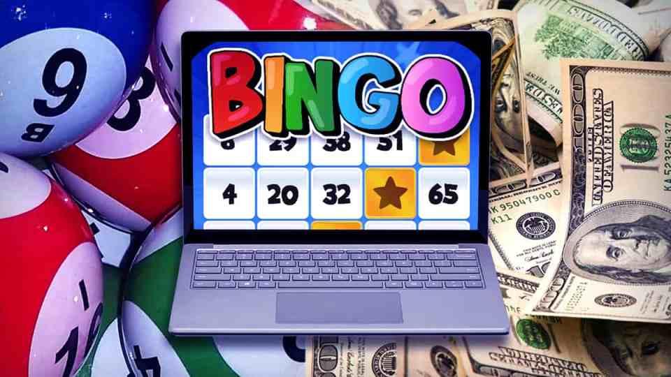 Online bingo - Bingo